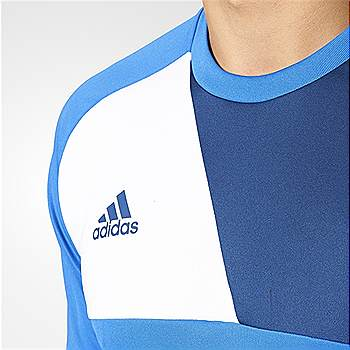 Adidas Goalkeepers top