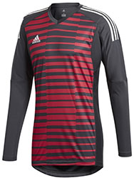 Adidas Pro Goalkeepers jersey