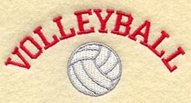 volleyball badge 2