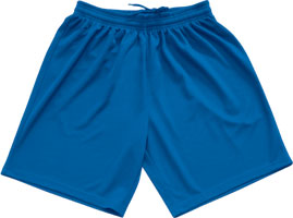 Macron Team shorts click on image to enlarge royal