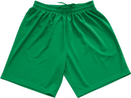 Macron Team shorts click on image to enlarge green