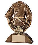 Tempo Strike Martial Arts Award