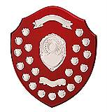 Ultimate Annual Shield 21 Years Award