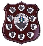 The Illustrious Annual Shield 10 Years Award