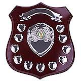 The Illustrious Annual Shield 11 Years Award