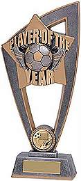 player of the year trophy